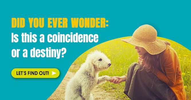 Society Story: Interesting coincidences that make us question the randomness of life