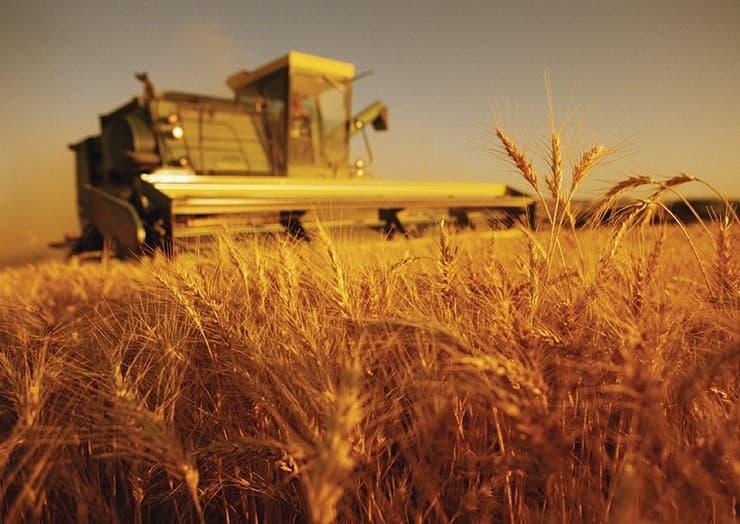 Geografia Pytanie-Ciekawostka: Który kraj jest jedynym samowystarczalnym krajem w Europie pod względem rolnictwa?