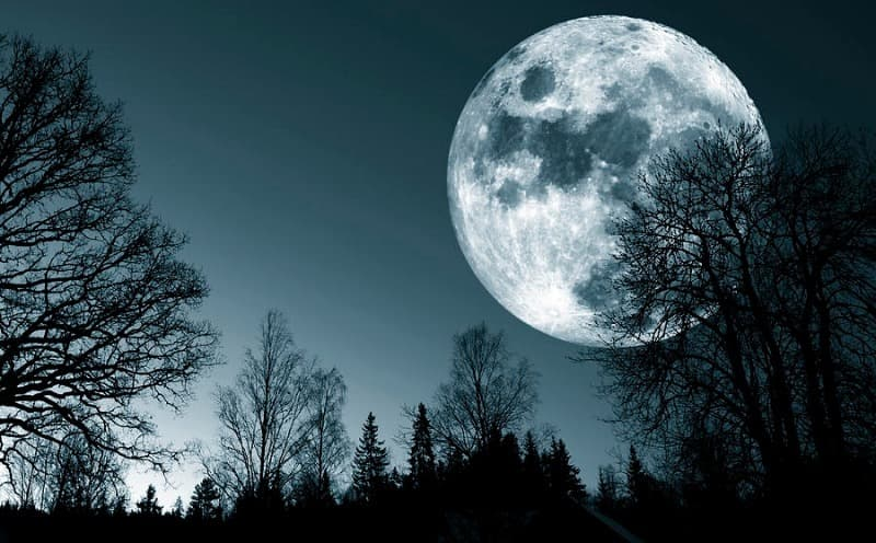 Society Trivia Question: How many full moons does a person live through in a lifetime assuming a lifespan of 80 years?