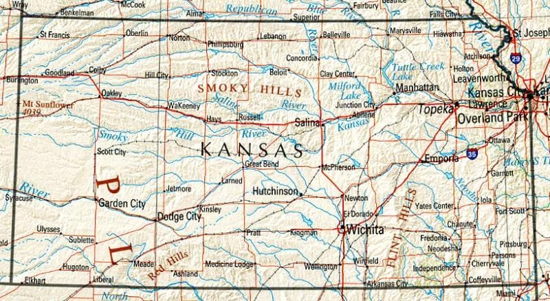 Geography Trivia Question: The state of Kansas is synonymous with which cheerful flower?
