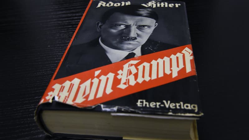 Culture Trivia Question: Does Mein Kampf translate as My Struggle?
