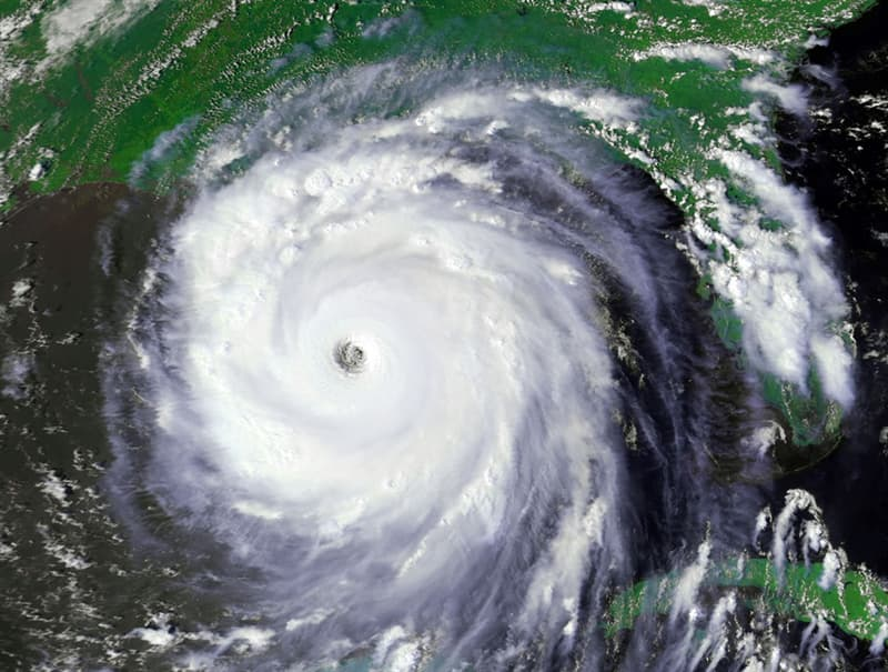 Society Trivia Question: How many people died as a result of Hurricane Katrina?