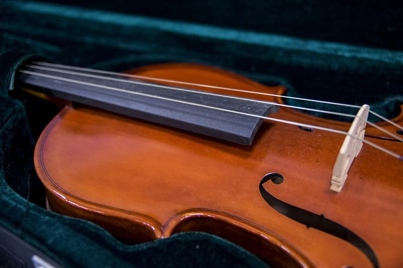 Culture Trivia Question: What are violin strings traditionally made of?