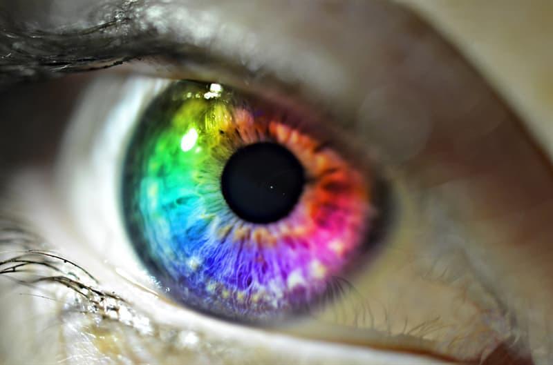 nauka Pytanie-Ciekawostka: Jaki jest najbardziej popularny kolor oczu?