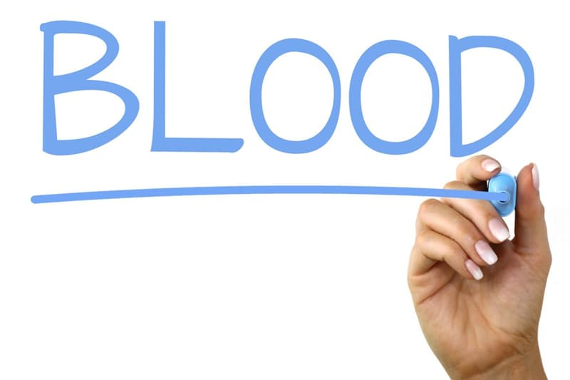 nauka Pytanie-Ciekawostka: Jakie są główne grupy krwi?