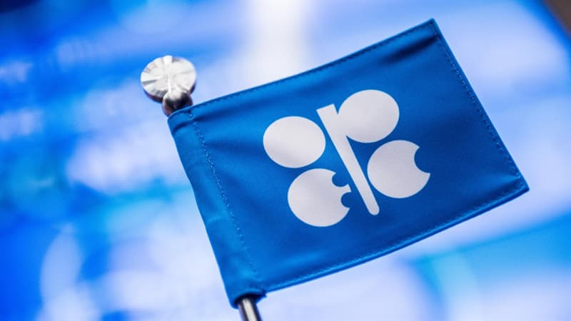Society Trivia Question: What does OPEC stand for?