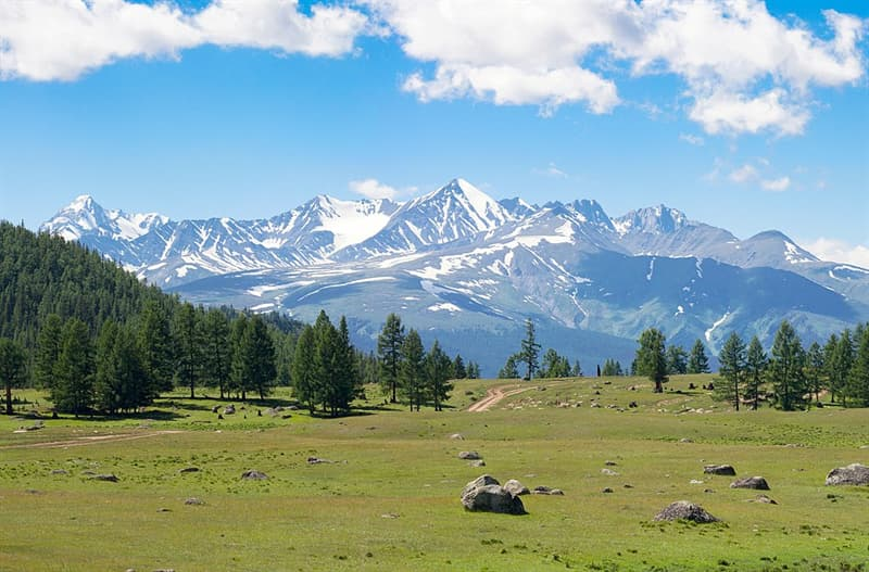 Geography Trivia Question: What state has the highest mean elevation?