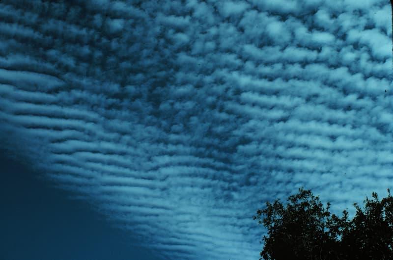 Nature Trivia Question: What type of cloud is this?