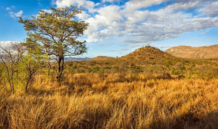 Geography Trivia Question: Where is Kruger National Park?
