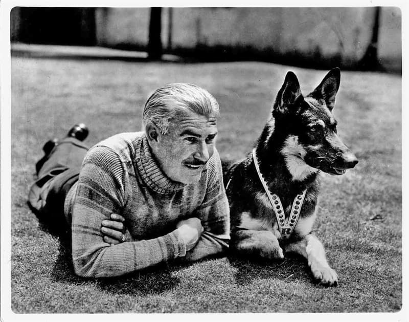 Movies & TV Trivia Question: Who played Rusty on TV's Rin Tin Tin ?