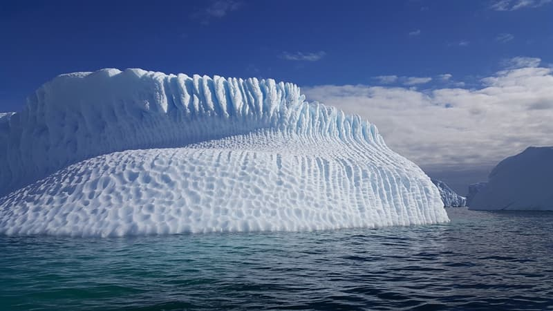History Trivia Question: How many countries signed the Antarctic Treaty on 1 December 1959?