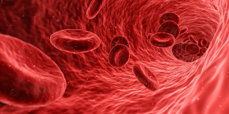 Science Trivia Question: If all of your blood vessels were connected end to end, how many miles would they run?