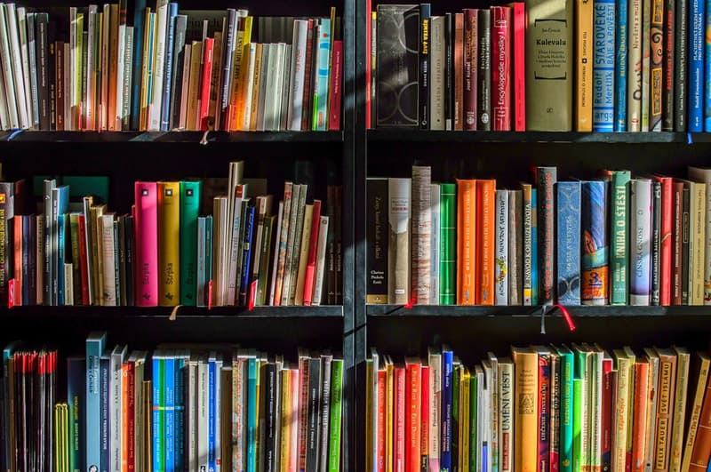 Culture Trivia Question: Which of the following famous novels was written by Charlotte Bronte?