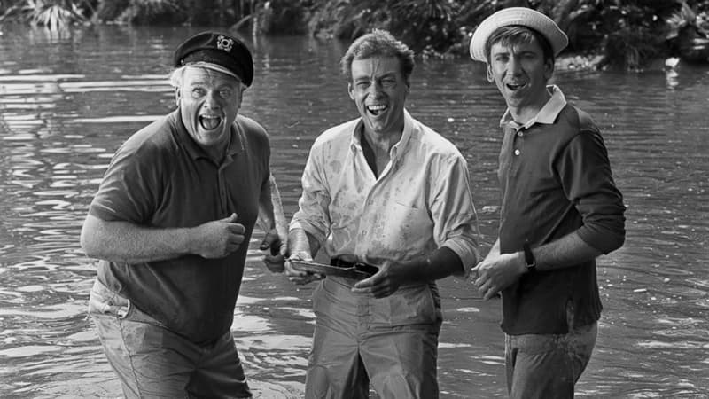 Movies & TV Trivia Question: What is the Professor's name, played by Russell Johnson, in the T.V. series Gilligan's Island?