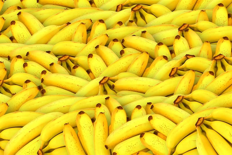 Nature Trivia Question: Which category of food does a banana fall into?