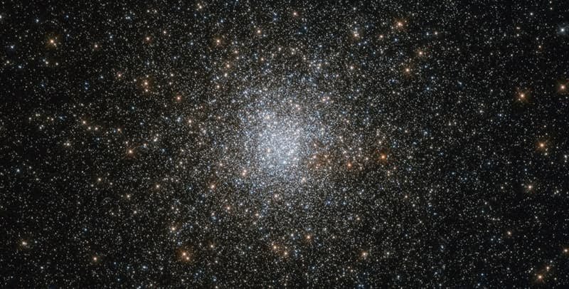 Science Trivia Question: Which star appears to be stationary in the northern hemisphere sky?