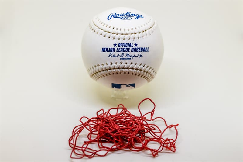 Sport Trivia Question: In 1998, what Major League Baseball player broke the home run record previously set by Roger Maris?