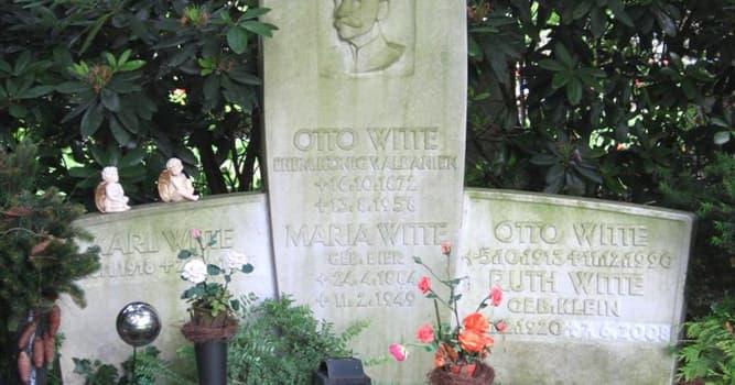 История Вопрос: Как долго Отто Витте был королём Албании?