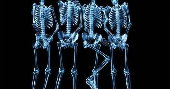 Сiencia Pregunta Trivia: ¿Quién descubrió los rayos X?