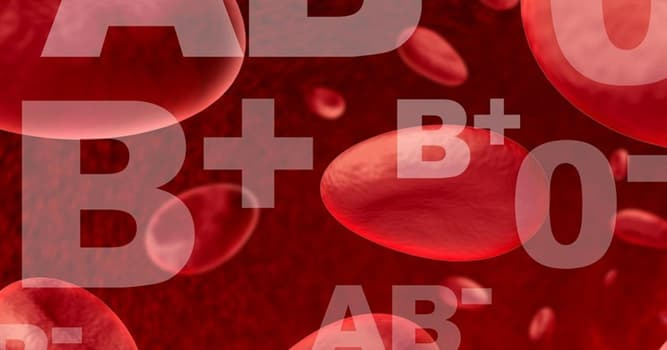 Nature Trivia Question: What is the rarest blood type?