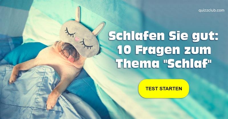 Gesellschaft Quiz-Test: 10 Fragen rund ums Schlafen