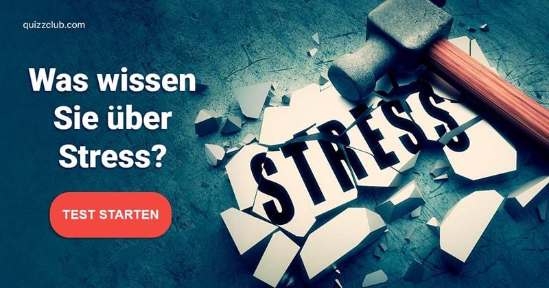 Wissenschaft Quiz-Test: Medizin-Quiz: Stress
