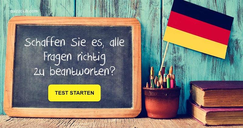Sprache Quiz-Test: Nur Genies kennen den Plural von diesen Wörtern!
