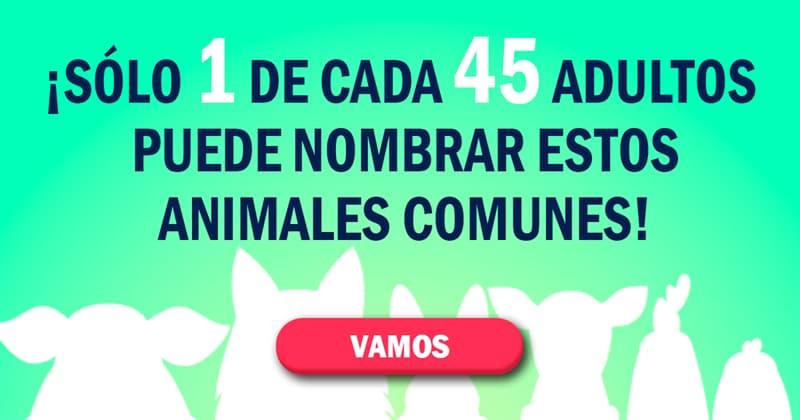 Сiencia Quiz Test: ¡Sólo 1 de cada 45 adultos puede nombrar estos animales comunes!