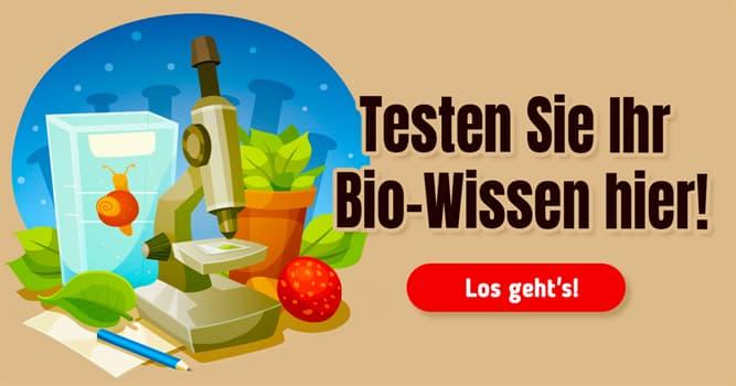 Natur Quiz-Test: Quiz: Natur und Biologie