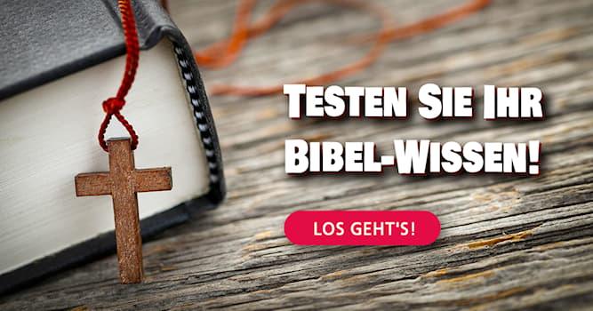 Kultur Quiz-Test: Bibel-Quiz: Können Sie diese 10 Fragen beantworten?