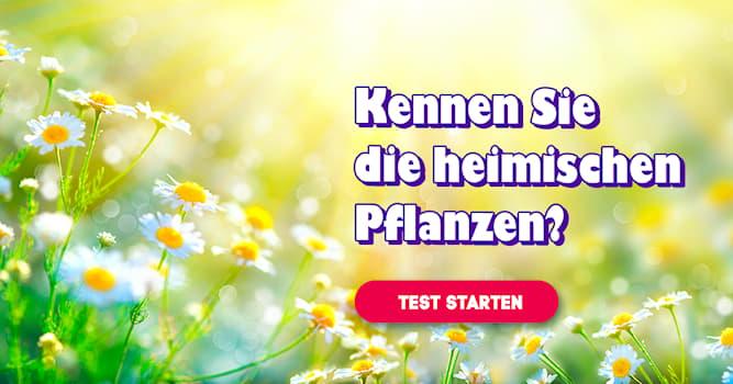 Natur Quiz-Test: Quiz: Heimische Pflanzen
