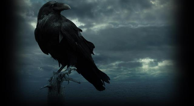 Kultur Wissensfrage: Was war das einzige Wort, dass der Rabe in einem Gedicht von Edgar Allan Poe sagte?