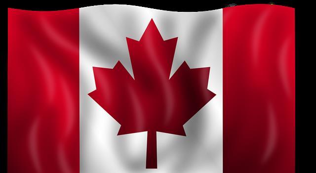 Naturaleza Pregunta Trivia: ¿Cúal es el árbol cuya hoja se encuentra en la bandera de Canadá?