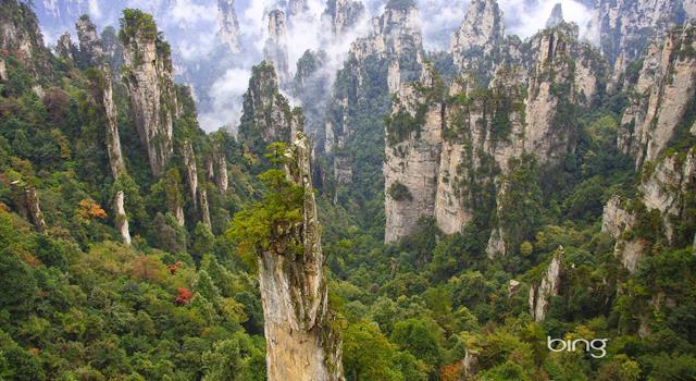 Naturaleza Pregunta Trivia: ¿Qué país tiene la mayor reserva natural o reserva ecológica del Mundo?