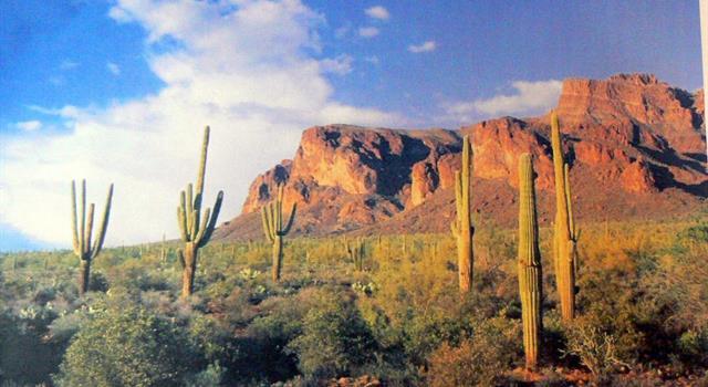 Geografia Pytanie-Ciekawostka: Gdzie znajdują się Superstition Mountains?