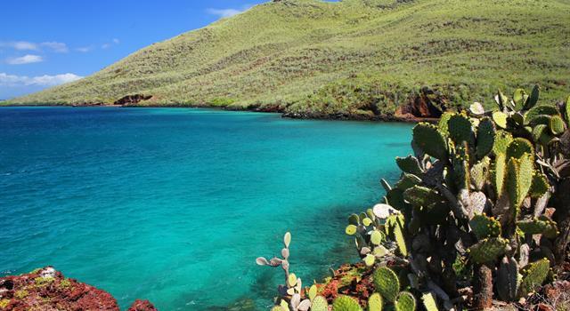 Geografia Pytanie-Ciekawostka: Do jakiego państwa należą wyspy Galapagos?