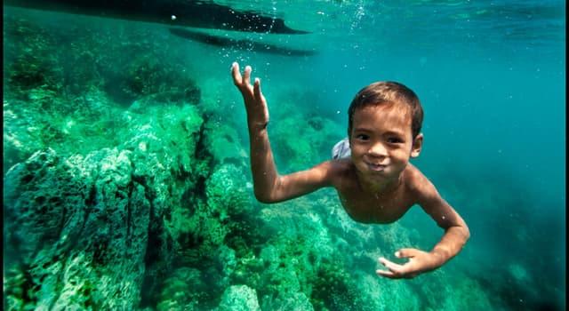 Sociedad Pregunta Trivia: ¿Qué capacidad especial tienen los niños de la tribu Moken, en el mar de Andaman?