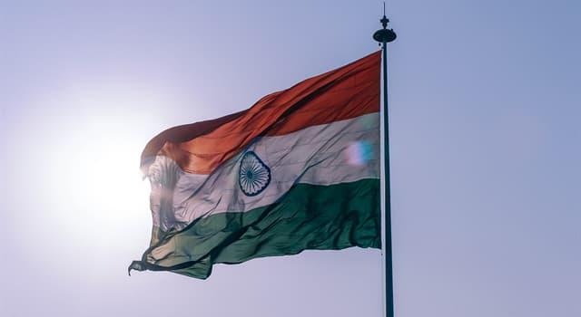 Kultur Wissensfrage: Welches Tier ist in Indien heilig?