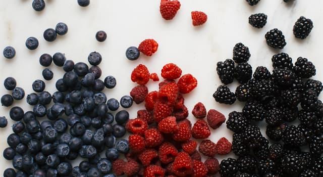 Natur Wissensfrage: Welche Frucht hat ihre Samen auf der Außenseite?