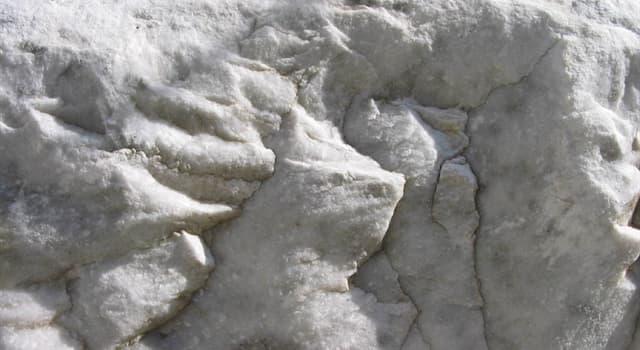 Natur Wissensfrage: Aus welcher Gesteinsart entsteht Marmor?
