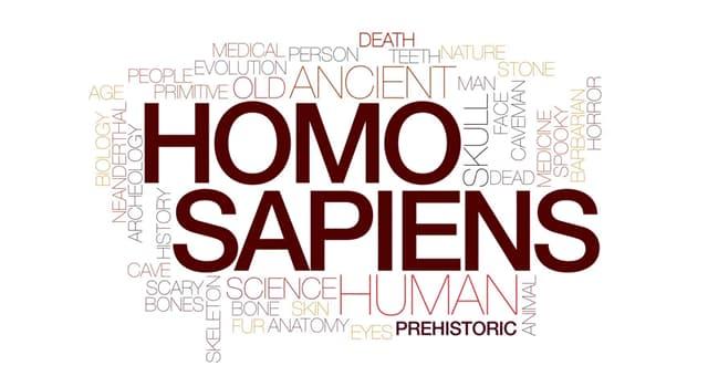 """Wissenschaft Wissensfrage: Was bedeutet """"sapiens"""" in """"homo sapiens""""?"""