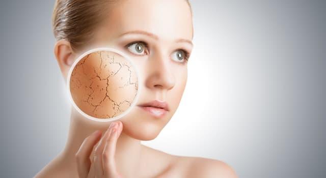 Наука Запитання-цікавинка: Яка частина тіла має найтоншу шкіру?
