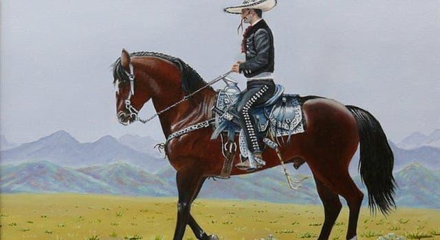 Kultur Wissensfrage: Wie heißt ein traditioneller Reiter aus Mexiko?