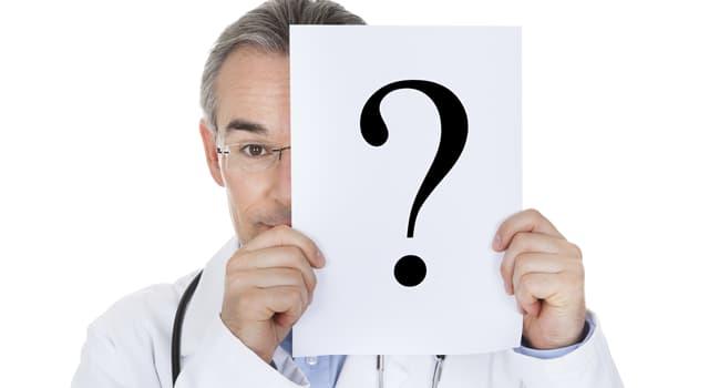 Wissenschaft Wissensfrage: Wo im menschlichen Körper befindet sich die Uvula?