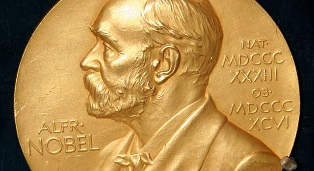 Gesellschaft Wissensfrage: Wer erhielt den Friedensnobelpreis nach dem Tod bei einem Flugzeugabsturz in Afrika?