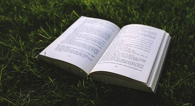 """Kultur Wissensfrage: Wer ist der Autor des Romans """"In einem andern Land""""?"""