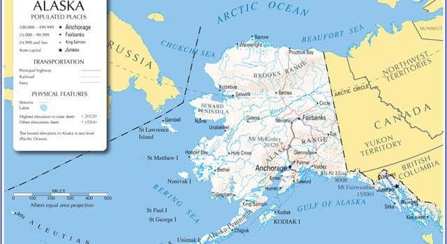 Natur Wissensfrage: Auf der Kodiak-Insel (Alaska) wohnt die größte Unterart von...