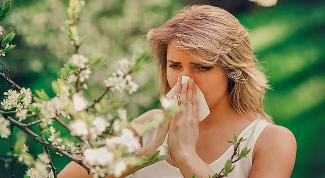 Сiencia Pregunta Trivia: ¿Qué es la histamina?