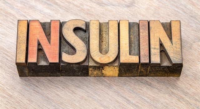 Сiencia Pregunta Trivia: ¿Qué órgano  del cuerpo humano produce insulina?