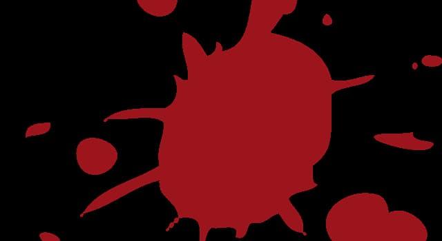 Wissenschaft Wissensfrage: Was ist die weltweit seltenste Blutgruppe?